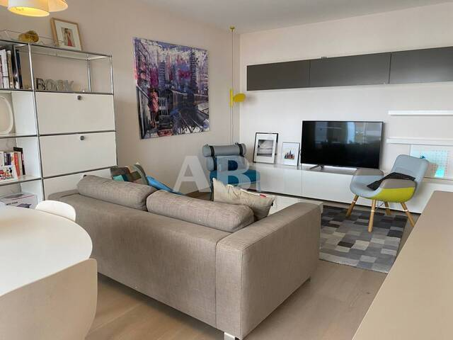 Immobilier Ferney Voltaire